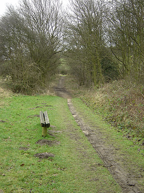 Bestwood Country Park - Colliers Pad