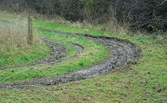 Muddy curves