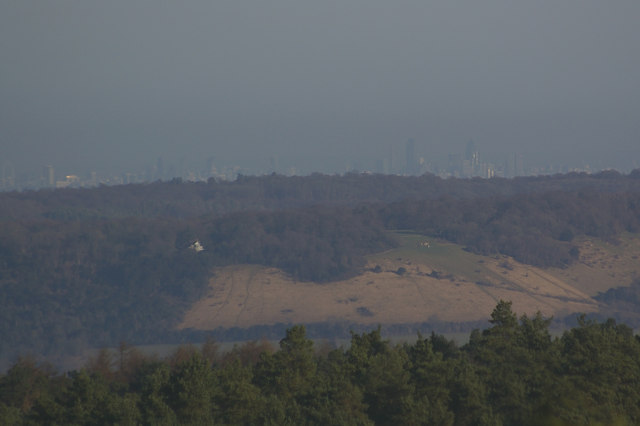 Box Hill from Leith Hill