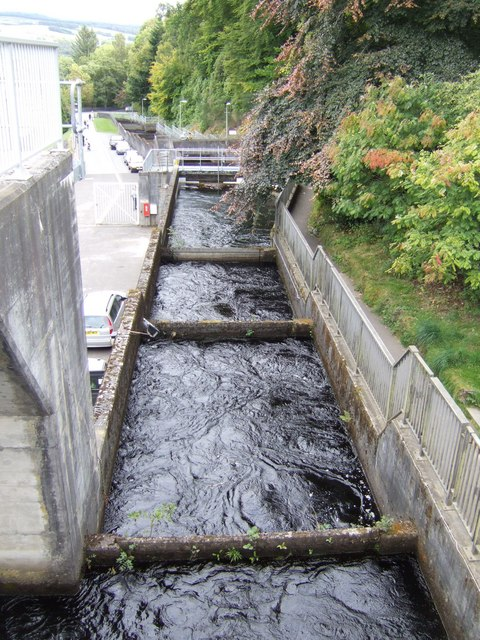 Fish ladder at Pitlochry dam