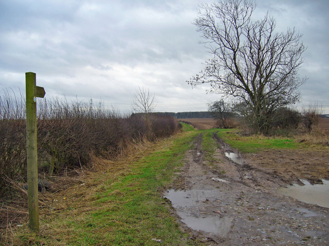 The Public Footpath towards Turton's Covert.
