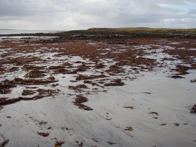 Seaweed strewn beach at Sìdhean Bhuirgh