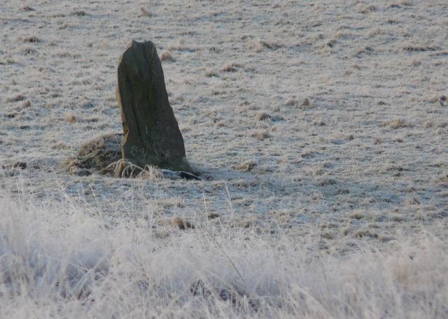 Standing stone at Invershin (detail)