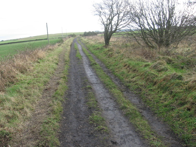 Cycle track on old railway near Ravenscar