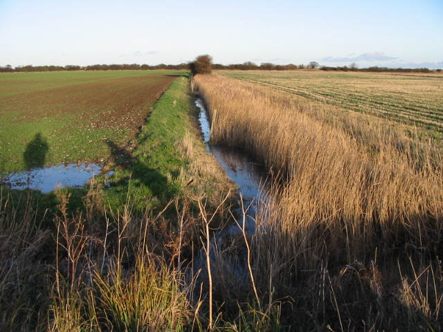 View towards the railway line along one of the many ditches