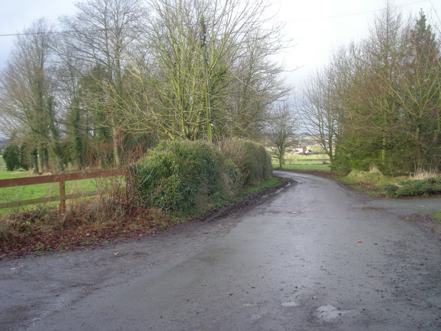 Driveway from The Woodlands (Trench Hall)