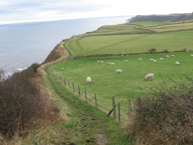 The Cleveland Way from Petard Point