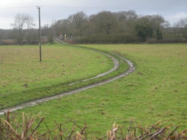 Level crossing across a field