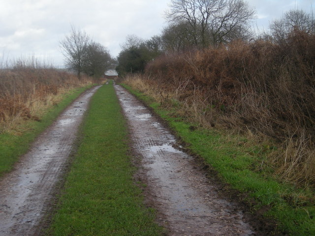 Farmtrack from Clive Wood