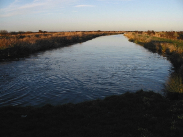 Looking NE along Roaring Gutter Dike