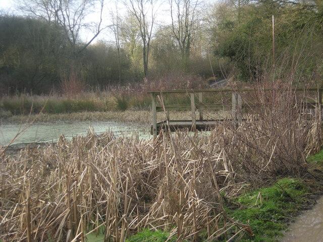 Merrington pond