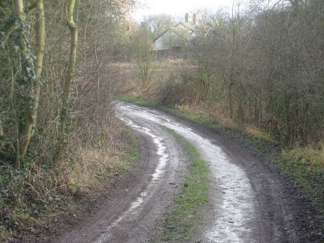 Track from The Hollins