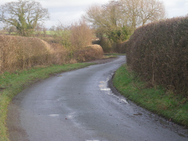 Lane near Fenemere Manor