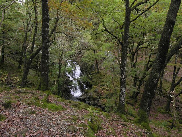 Falls on the Nant Cadair