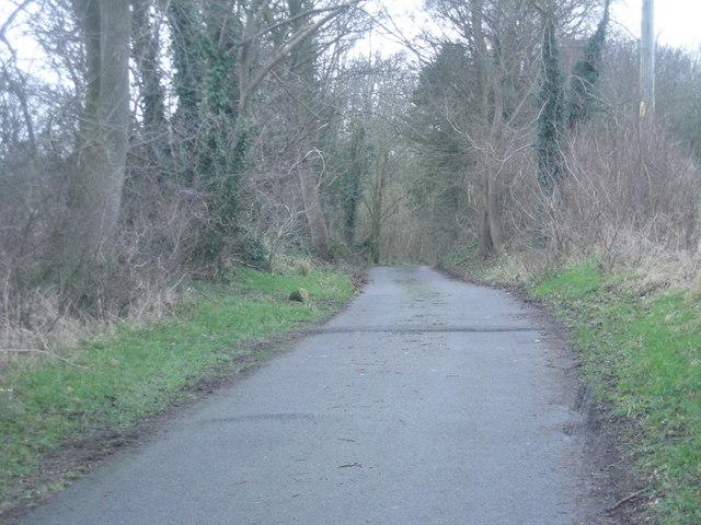 Private road to Boreatton Hall