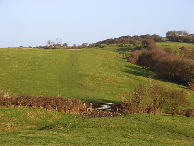 Pastures above Quainton