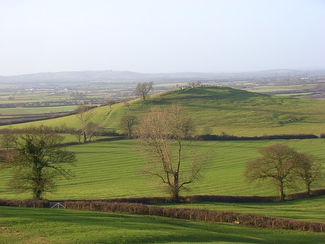 Pastures, Quainton
