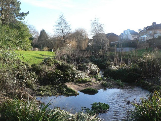 Coy Pond Gardens: top section
