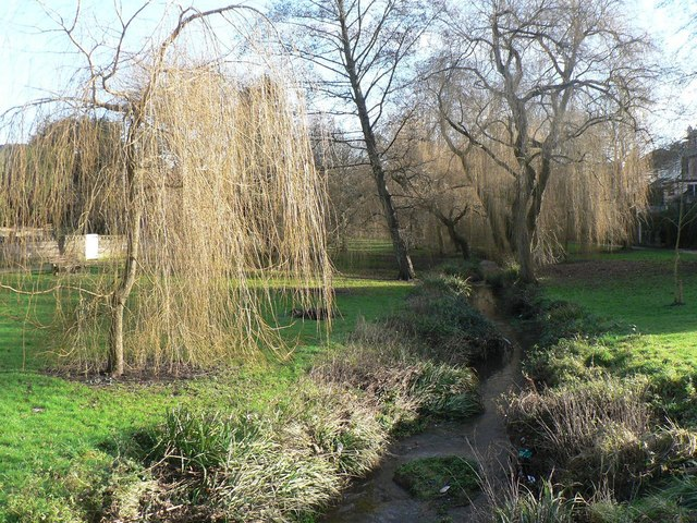 Coy Pond Gardens: stream and willows