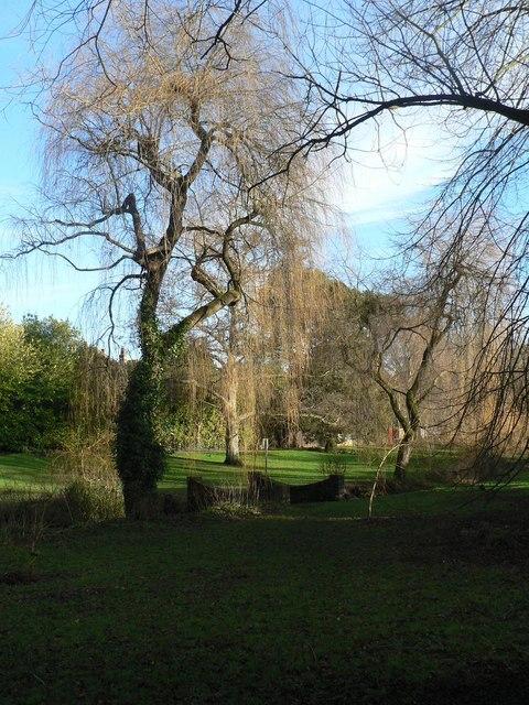 Coy Pond Gardens: small bridge over stream
