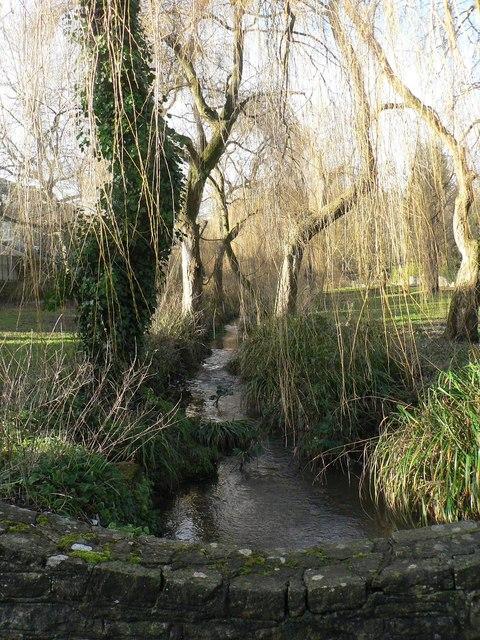 Coy Pond Gardens: upstream from bridge