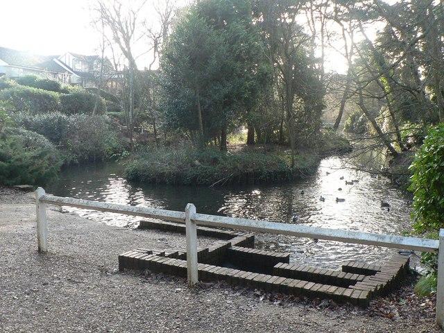 Poole: Coy Pond (top)