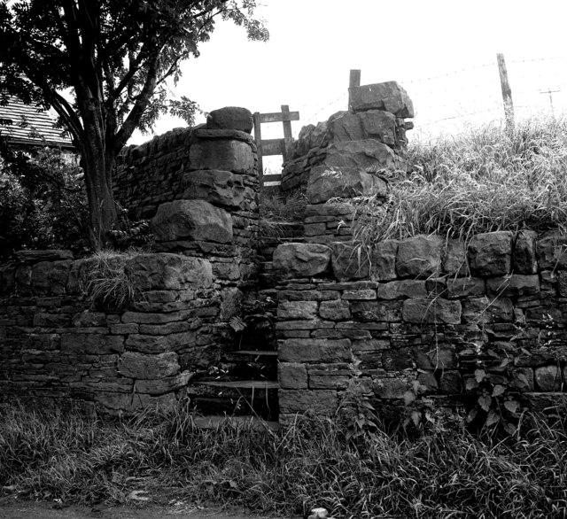 Walled stile at Aldersley, Yorkshire