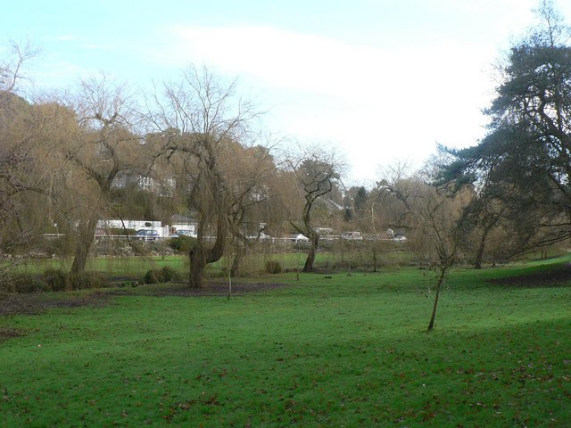 Coy Pond Gardens: some wonky trees