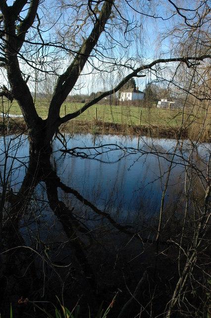 Pond on Shuthonger Common