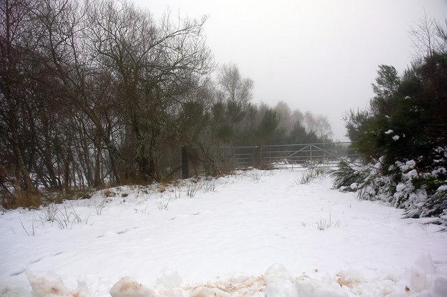 Farm gate at Clunevackie