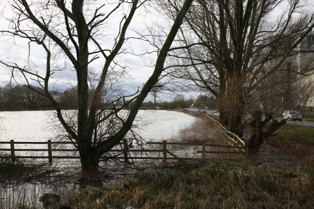 Flood meadows flooded