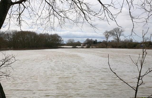 Flooded flood meadows