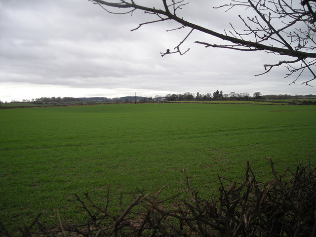 Grazing land near the A5
