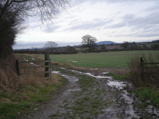 Footpath east from Whitley Grange