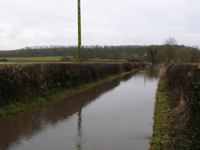 Flooded lane between Stratton and Dorchester