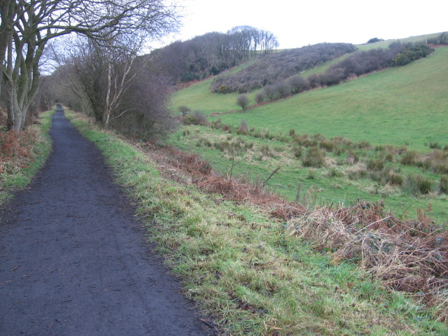 Cycle track near Newlands Dale