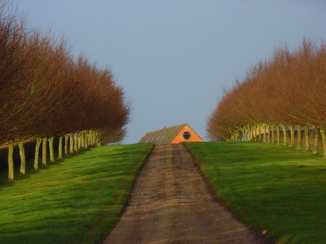 Driveway to Meadows Farm, Badby