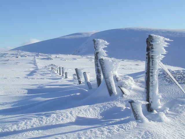 Rime covered fence posts