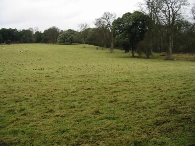 A view across the fields near Betteshanger