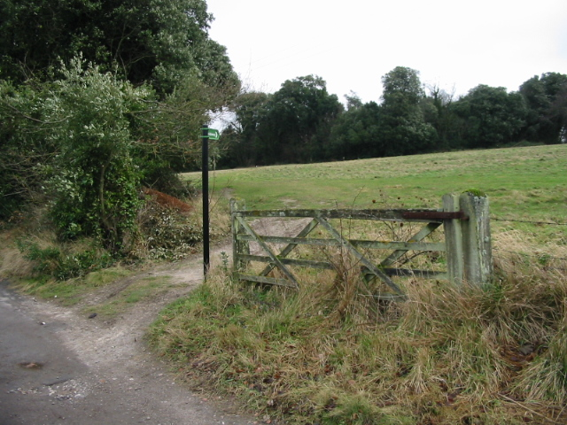 Bridleway towards Sheep Wash, Betteshanger
