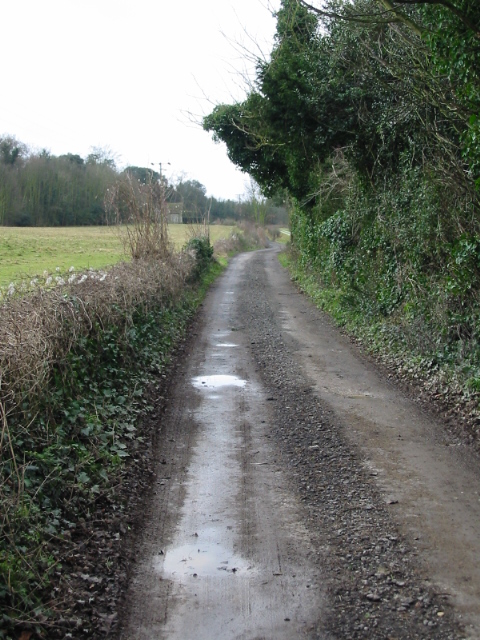 Looking SW along bridleway through New Park