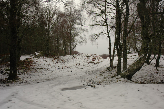 Snowed-over track to Dalreach