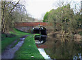 SO8687 : Staffordshire and Worcestershire Canal  at Gothersley Bridge by Roger  Kidd