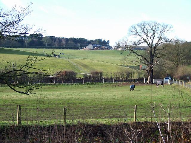 Farmland  near Prestwood, Staffordshire