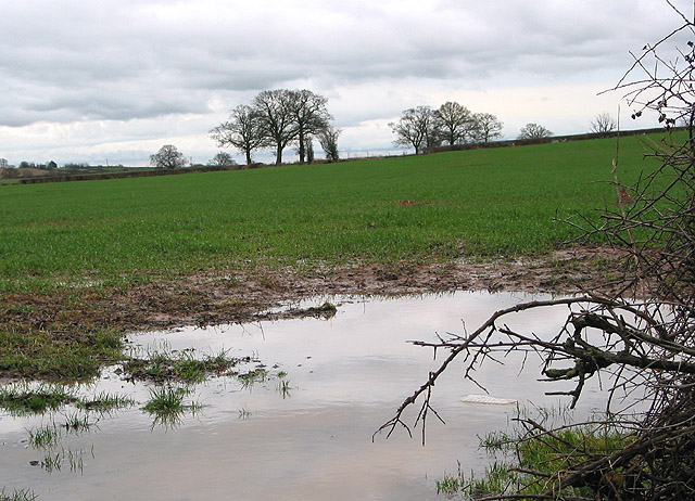 Saturated farmland at Little Marcle