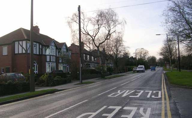 Holt Lane