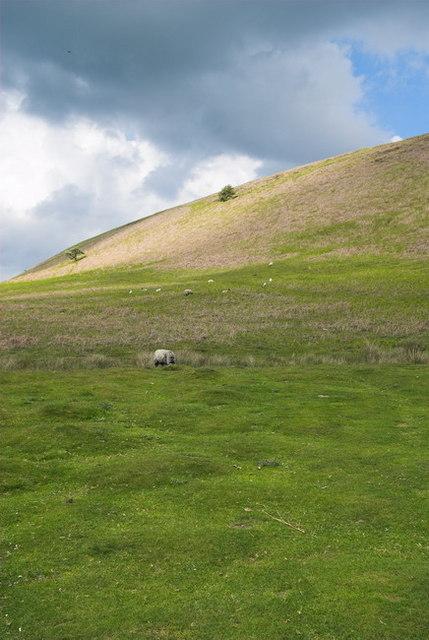 Hills Near Levisham
