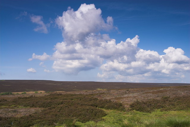 North York Moors