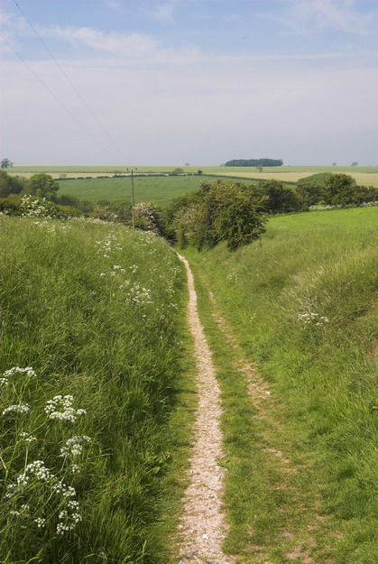 Pathway to Wharram Percy
