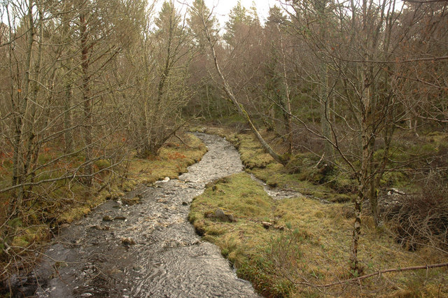 Stream near Dulsie Wood